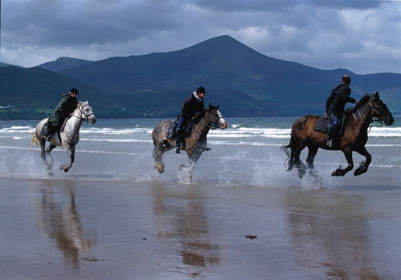 Kerry-Rossbeigh Beach Glenbeigh Killarney